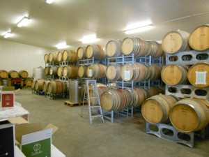 Julicher's boutique winery - ageing Pinot Noir